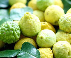 Citrus Season Brings With it Some Unique Fruits!