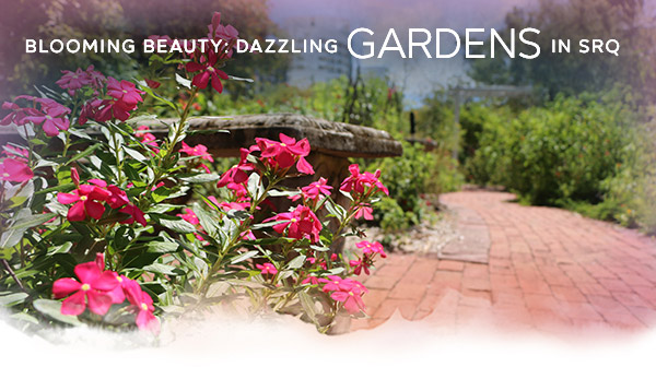 Blooming Beauty: Dazzling Gardens in SRQ